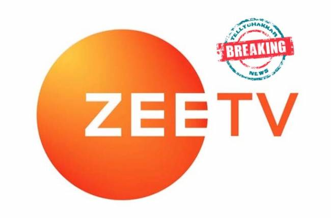 Zee TV To Come Up With The New TV Show 'Delhi Weds Haryana'